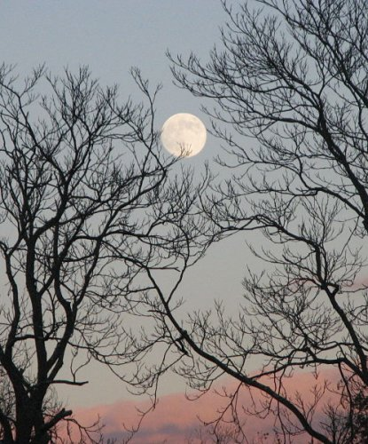 Full Moon over Shenandoah National Park